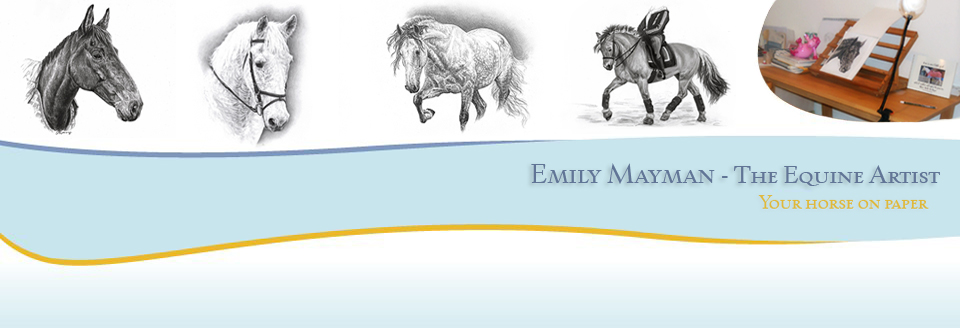Emily Mayman - The Equine Artist - Your horse on paper